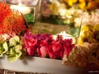 colorful-flowers-carolarafael