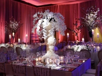 MIAMI WEDDING PLANNER
